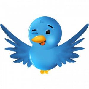 twitter-bird-3-